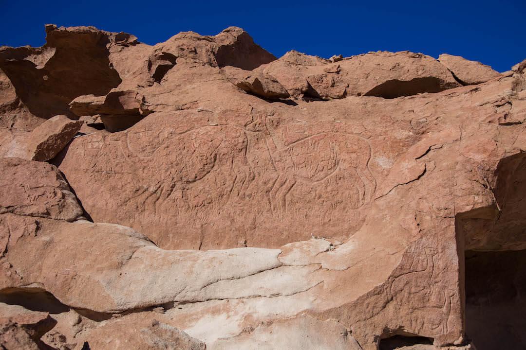 Petroglifos de animales en roca
